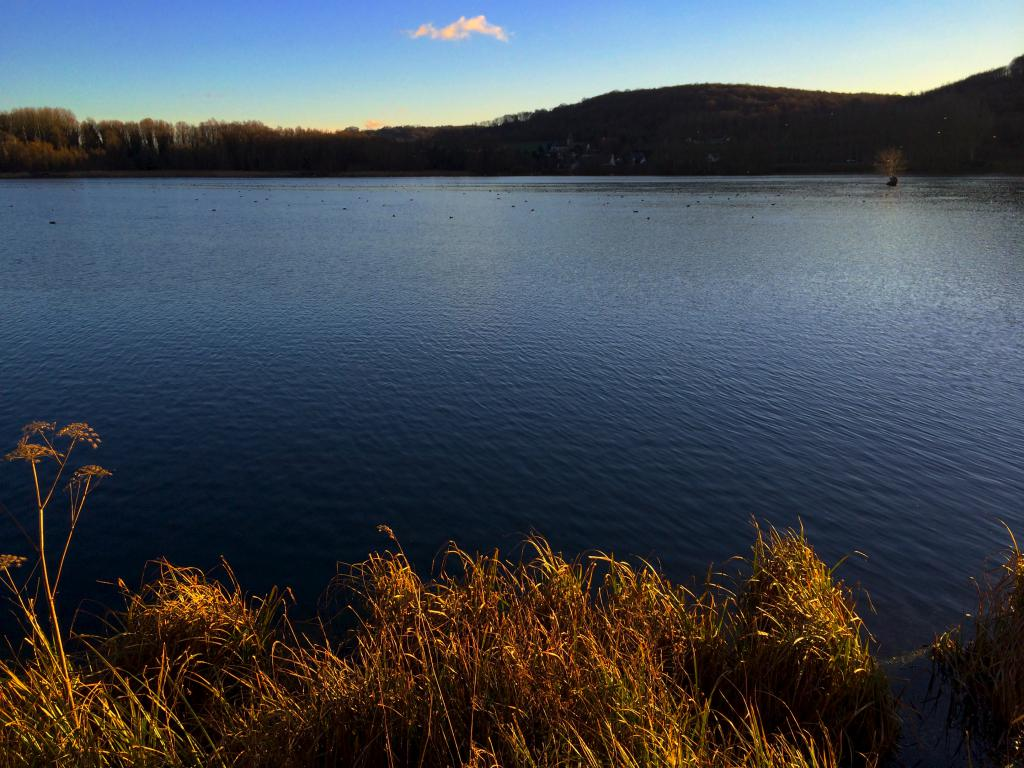 Lac de Gamaches