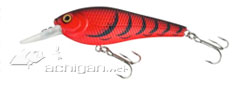 XPS, Bass Pro Shops Static Shad lure