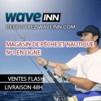 Waveinn.com un site à consulter